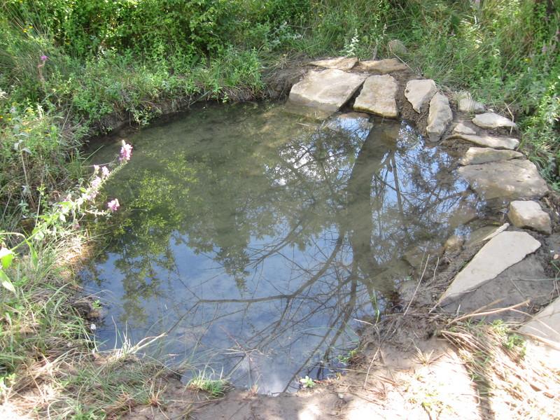 Подрусловая вода